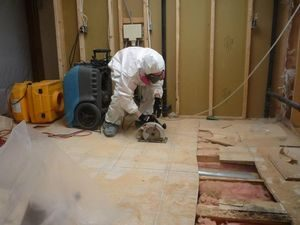 Water Damage Restoration And Mold Removal Services