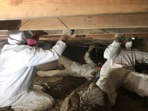 Technicians Remediating Water Damage In A Crawlspace