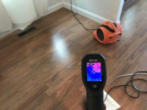 Water Detection Methods Being Conducted After Drying Out A Home